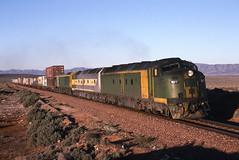 Westbound bulldog (Bingley Hall) Tags: australia transport rail railway railroad train transportation trainspotting diesel locomotive engine bulldog streamliner emd clydeengineering mka morrisonknudsen commonwealthrailways australiannational australiasouthernrailroad geneseewyoming 645e3 southaustralia freight tolltrain clf7 railpage:class=60 railpage:loco=clf7 rpauclfclass rpauclfclassclf7 yorkeyscrossing intermodal