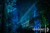 Enchanted Forest (Trent's Pics) Tags: ancientforest descansogardens enchantedforestoflight nightphotography beams descanso forest gardens light lights night