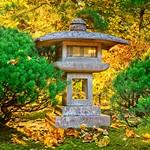 Japanese Garden Sunrise 4571 B thumbnail