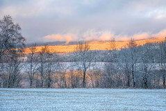 Early Winter Light (bjorbrei) Tags: snow winter field countryside trees lake water hills hill forest sunset sky clouds maridalen maridalsvannet oslo norway