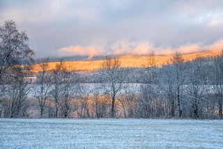 Early Winter Light