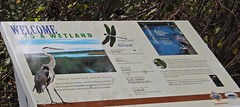 sign Center for Wildlife Ed ncwetlands KG (12) (ncwetlands.org) Tags: northcarolina barrierisland tidalmarsh brackishmarsh curritucksound boardwalk lighthouse freshwaterwetland