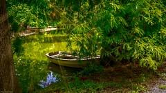 Secret Place - 4194 (YᗩSᗰIᘉᗴ HᗴᘉS +11 000 000 thx❀) Tags: secret mysterious place secretplace endroitsecret green nature barque boat bordeaux aquitaine france fr water étang lac hensyasmine yasminehens espacenaturel gironde