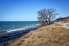 Duck Lake Curve (Leslie Victor) Tags: mg48673 beachgrass dunegrass lakemichigan beach waves dunes ducklake