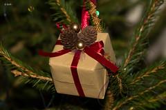 December 2017 (Rob_ert) Tags: 2017calendar canoneos60d christmas flickr kelso present