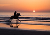 Essaouira Sunset (ToriAndrewsPhotography) Tags: horse galloping beach essaouira morocco sunset sand sea photography andrews tori