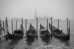 Gondolas in the mist (halifaxlight) Tags: italy veneto venice gondolas sangiorgiomaggiore church mist stakes boat lagoon sea bw absoluteblackandwhite