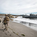 U.S. Marines observe a beach in support of exercise Steel Knight 2018.