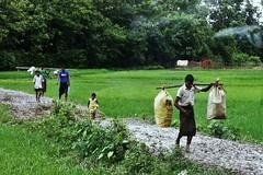 Welcome To Bangladesh ! (N A Y E E M) Tags: rohingya refugees street refugeecamp ukhia coxsbazaar bangladesh carwindow photojournalism reportage genocide exodus ethniccleansing rohingyagenocide saverohingya crimesagainsthumanity