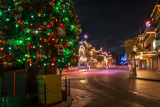 Christmas Tree on Main Street 11_8_2017