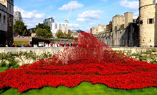 At The Going Down Of The Sun...We Will Remember Them..