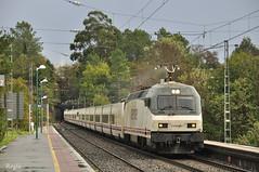 Arbo (REGFA251013) Tags: arbo renfe talgo camas tren hotel vigo barcelona galicia lineamonfortevigo train 252031