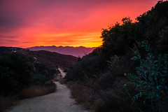 Eagle Rock Trail - Topanga State Park - Los Angeles, California (ChrisGoldNY) Tags: chrisgoldphoto chrisgoldny chrisgoldberg forsale licensing bookcovers bookcover albumcover albumcovers sonyalpha sonya7rii sonyimages sony topanga california losangeles la socal californian hiking trail statepark topangastatepark eaglerock hike nature colors colours colorful colourful paths red rouge psychedelic dusk magichour challengewinner challengefactory unanimous