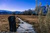 Owens Valley-111 (Denise Noelle Photography) Tags: owensriver bishopca sierranevadamountains monolake lonepine junelake mammothlakes