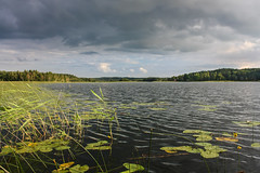 IMG_4609-1 (Andre56154) Tags: schweden sweden sverige see lake wasser water ufer himmel sky wolke cloud schilf reet landschaft landscape