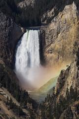Lower Yellowstone Fall, Yellowstone NP, USA (birgitmischewski) Tags: yellowstone yellowstonenp loweryellowstonefall rainbow artistpoint