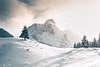 Winterwonderland (noberson) Tags: winter winterwonderland switzerland snow snowing light glow white tree trees alps alpine peak mountain nikon d750 tamron