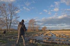 El Suec als arrossars (ouyea...) Tags: arrossar baixempordà paisatge landscape xt2 fujifilmxt2 fujinon1855 fujifilm