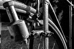Man Powered (Walimai.photo) Tags: black white blanco negro byn bw branco preto blanc noir bike bici bicicleta dinamo metal lumix lx5 panasonic