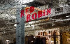 RED ROBIN (ponzü) Tags: spectrum twilight lrexportviajf reflection thingsarenotastheyseem uncool cool uncool2 uncool3 uncool4 uncool5 uncool6 uncool7 cool2