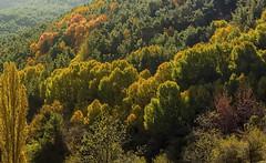 cotefablo 3 (juan luis olaeta) Tags: paisajes landscape autumn otoño natura udazkena pirineos cotefablo huesca aragon