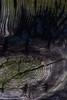 Cavernous (Broot Thanks for 0.85 million views!) Tags: hortonlanding novascotia canada november autumn fall 2017 knothole wood mysterious