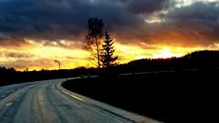 Road (sakarip) Tags: sakarip road sunset driving finland evening sky clouds trees