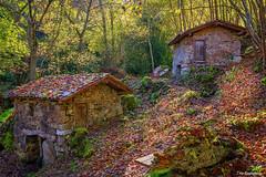 Molinos de Corroriu (ton21lakers) Tags: molino quiros asturias arquitectura arboles bosque naturaleza hojas agua toño escandon canon tamron