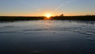 Frozen Puddle Sunrise