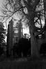 DSC_18762 (daviemoran1) Tags: cathedral tree dunkeld perthshire mono bw scotland building larch clock tower