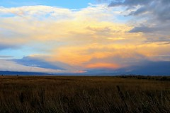 Valley Pastels (Patricia Henschen) Tags: alamosa colorado sanluisvalley goldenhour mountains clouds rural southriverroad backroad autumn snow ranch countryside valley