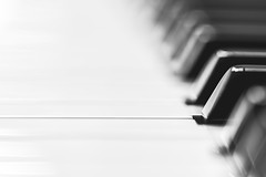piano (Marc McDermott) Tags: memberschoicemusicalinstruments macromondays macromonday macro piano keys blackandwhite musical instrument space sundaylights monochrome