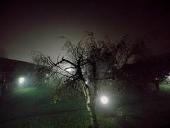 Wide-angle darkness. (thnewblack) Tags: lg v30 android smartphone cameraphone night lowlight dark moody rainy foggy 13mp f19 wideangle