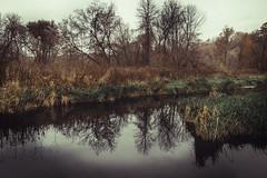 calm reflection (sa78) Tags: mississauga ontario nature reflection river pond autumn fall landscape