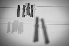 Les Deux Grandes. (Marie-Laure Even) Tags: 2010 and bw black blackandwhite blanc clothesline clothespin cordeàlinge et france français française french marielaureeven nb nikond5000 noir noiretblanc ombre pinceàlinge shadow white франциа travel voyage