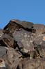 DSC_8127s (ryokomoto) Tags: cosopetroglyphs ca ridgecrest