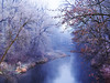 Park on a frosty winter morning (kasiaczn) Tags: europe poland sławięcice winter park plac chanel water trees day morning landscape flora natura beautiful bacground white frozen abstract country earth frost gardens
