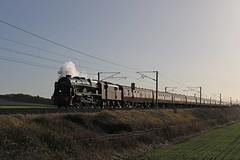 Backlit Scot (Andrew Edkins) Tags: 46100 royalscot lms stanier 460 railwayphotography marston christmaswhiterose steamtrain ecml glint sun mainlinesteam linclolnshire england uksteam geotagged canon winter 2017 november