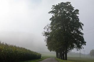 Altmühl  valley near Treuchtlingen