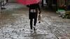 Duck! (DepictingPhotos) Tags: asia birds china ducks shaxi umbrellas