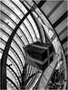 Estructuras en Garden Santa Fe (Ifastag) Tags: garden mexico méxico santafe acero architecture arquitectura bn estructura gift regalo steel structure iphone apple ciudaddeméxico mx