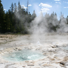 Yellowstone Park USA (Free For Commercial Use (FFC)) Tags: usa yellowstone travel freetravelimage world adventure escape freedownload freeforcommercialuse creativecommons creativecommonsattribution