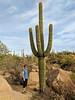 IMG_20171203_111030_KristinSaguaro (EnduroDoug) Tags: arizona scottsdale mcdowellmountain trailrunning trailrace 25k saguaronationalpark cactus saguaro desert countrymusic green arid wilderness margarita
