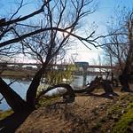 Timiș River, Province of Banat, Romania thumbnail