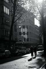 late autumn light@Düsseldorf, Germany (Amselchen) Tags: street streetphotography people bike bicycle building tree cars lighandshadow light shadow mono monochrome blackandwhite bnw lovemono dof sony a7 alpha7 zeiss carlzeiss sonnar sonnart1855 sonyilce7 fe55mmf18za za sonnar5518za