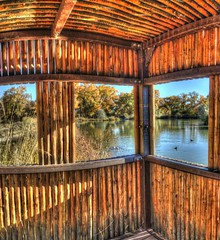 wildlife viewing blind (JoelDeluxe) Tags: tingley beach abq bosque albuquerque dukecity nm newmexico biopark ponds fall colors red orange yellow green blue ducks wildlife fishing recreation landscape panorama hdr joeldeluxe