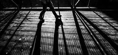 Surburban cage (Jonathan Vowles) Tags: london shadows sillhoulette