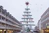 Árbol de Navidad (★ Angeles Antolin ★) Tags: nuremberg snow winter christmas tree