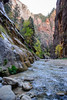 Hiking the Narrows (shirley319) Tags: 2017 d600 nationalparks october southwest thenarrows utah virginriver zionnationalpark adventure hiking riverrocks rocks scenic slotcanyon water waterhiking greenville unitedstates