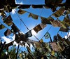 Prayer Flags (rachael242) Tags: prayer flags wind blow blowing sky sun shine landscape colors trees abstract 7dwf